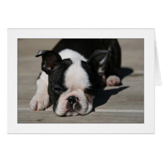 Howie Pouts Greeting Card