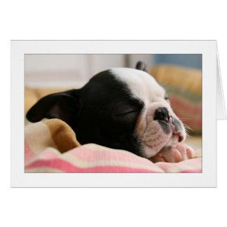 Howie Sleeping Greeting Card