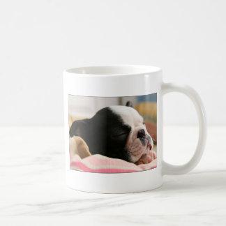 Howie takes a nap Mug