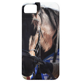 Howl iPhone SE/5/5s Case