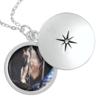 Howl Locket Necklace