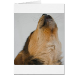 Howler Card