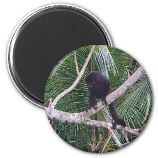 Howler Monkey and Baby Monkey in Costa Rica Jungle 2 Inch Round Magnet
