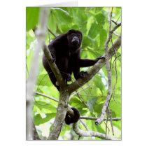 Howler monkey card