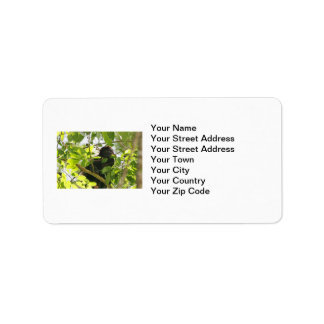 Howler Monkey Eating in the Jungle Label