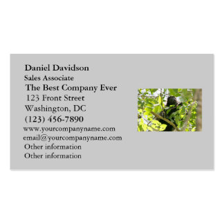 Howler Monkey in the Jungle Photo Business Card Template