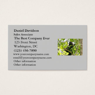 Howler Monkey in the Jungle Photo Business Card
