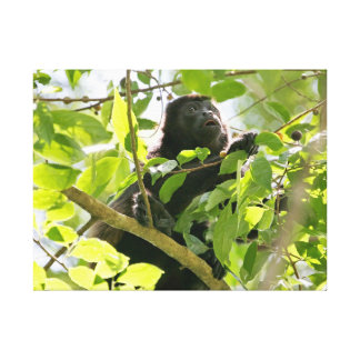 Howler Monkey in the Jungle Photo Canvas Prints