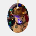 ¡Howlidays feliz! Ornaments Para Arbol De Navidad