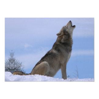 Howling Alaskan Timber Wolf Card
