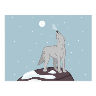 Howling Arctic Wolf Postcard