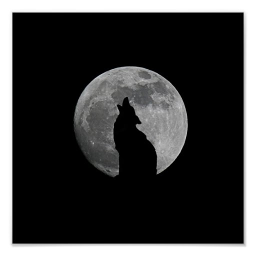 HOWLING AT THE MOON POSTERS