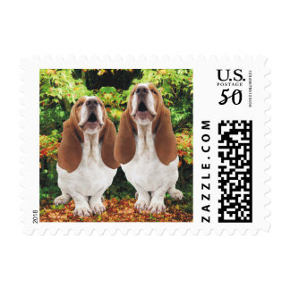 Howling Basset Hounds Autumn Fall Woods Postage