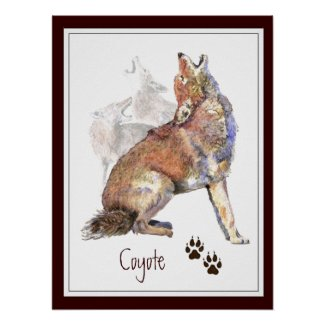 Howling Coyote Animal Nature Poster zazzle_print