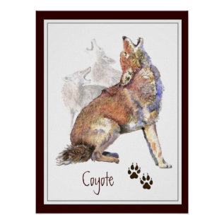 Howling Coyote Animal Nature Poster at Zazzle