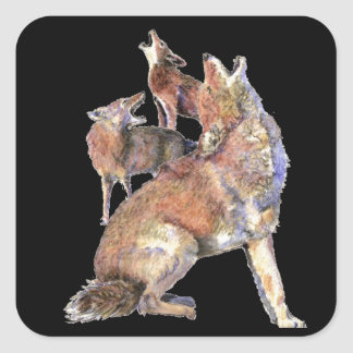 Howling Coyote Pack, Animal, Nature  Wildlife Square Sticker