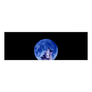 Howling Grey Wolf at Night Door Poster Print