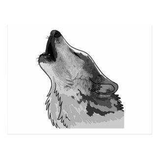 Howling grey wolf postcard