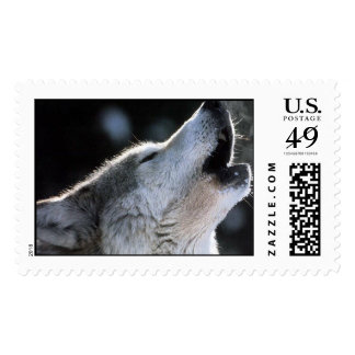howling stamp