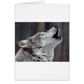 Howling Tundra Wolf Card
