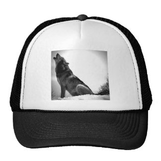 Howling Wolf in Snow Hats