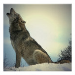 Howling Wolf Poster Print