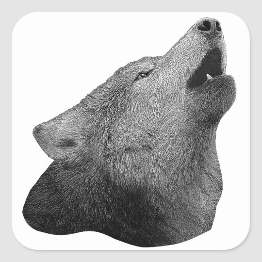 Howling Wolf - Stylized Image Square Sticker