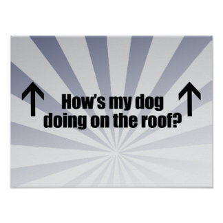 HOW'S MY DOG DOING ON THE ROOF.png Poster