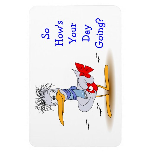 How 39 s your day going wacky funny bird seagull rectangle for How s the fishing