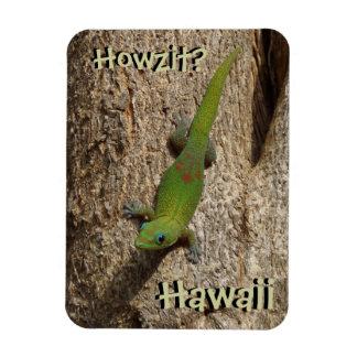 Howzit Hawaii gecko tropical rectangle magnet