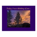 Hoy, pensaba en usted… tarjetas postales
