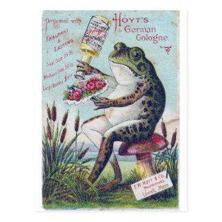 Hoyt's German Cologne Frog Postcard