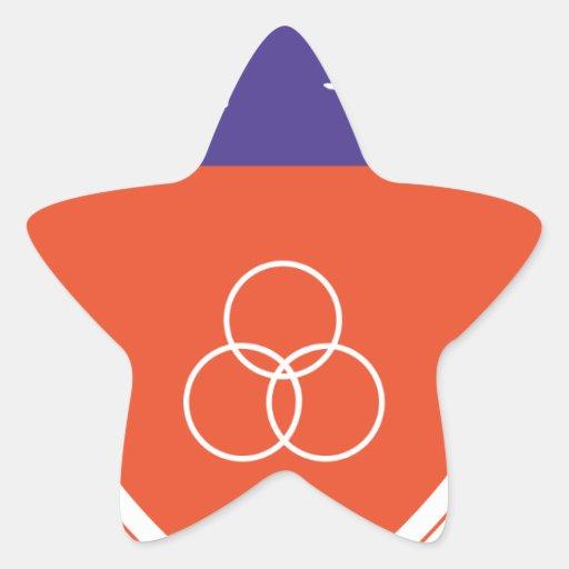 HQ de China Colcomanias Forma De Estrellaes Personalizadas