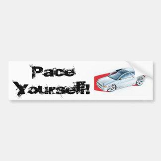 hrdp_0804_06_z+amc_concept_cars+amc_pacer, paso… pegatina para auto