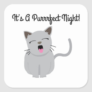 H's G Purrfect Night! Square Stickers