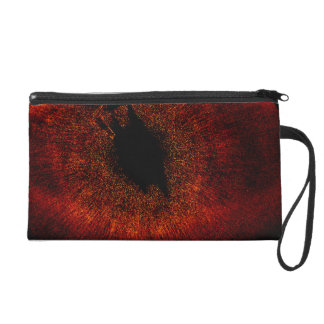 HST ACS:HRC Wide View of Fomalhaut System Wristlet Clutch