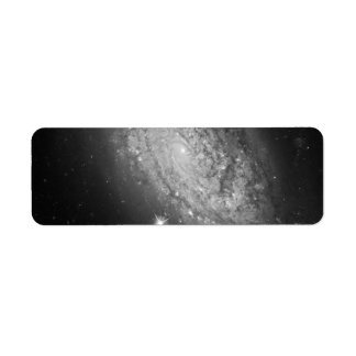HST ACS:WFC Image of NGC 3021 Labels
