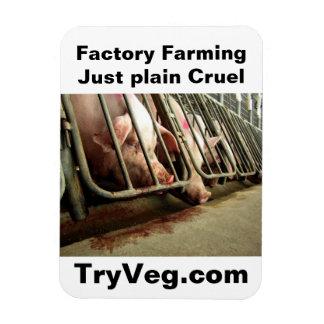 HSUS jpg TryVeg com llano de FarmingJust de la f Imanes Rectangulares