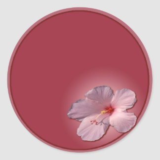 http://www.zazzle.com/hibiscus-217308717431168949 classic round sticker