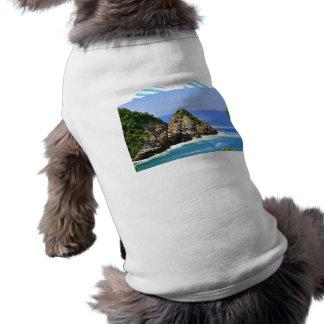 Huatulco coastline shirt