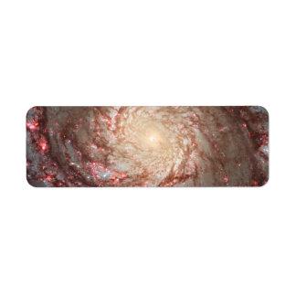 Hubble ACS Visible Image of M51 Custom Return Address Label