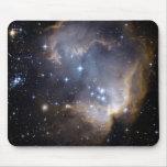 Hubble observa las estrellas infantiles en galaxia alfombrilla de raton