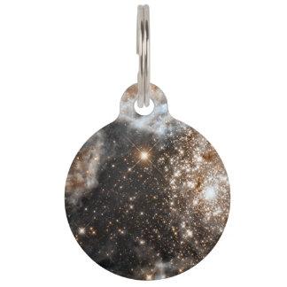 Hubble Observes the Large Magellanic Cloud's Pet Tags