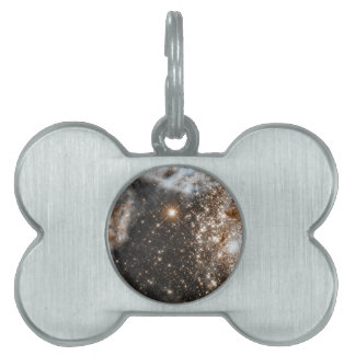 Hubble Observes the Large Magellanic Cloud's Pet Name Tags