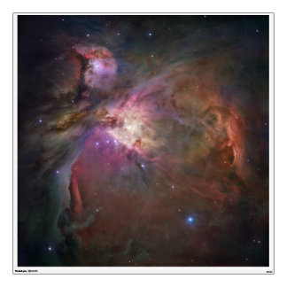 Hubble's Sharpest View of the Orion Nebula Wall Stickers