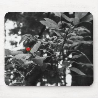 Huckleberry Mousepad