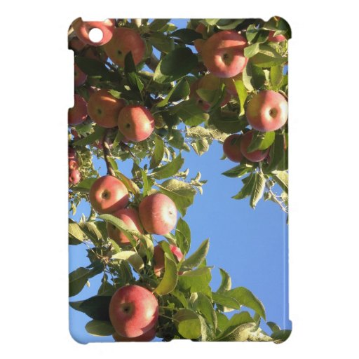 Hudson Valley Apples Case For The iPad Mini