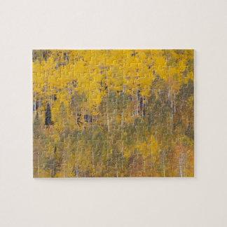 Hueco de Lamberto árboles 2 del álamo temblón Puzzles Con Fotos