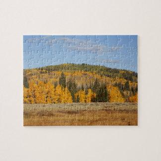 Hueco de Lamberto árboles del álamo temblón Puzzles