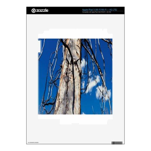 Hueco soñoliento de los árboles de la naturaleza iPad 3 skins
